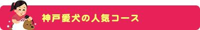 神戸愛犬の人気コース